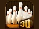 Profesyonel Bowling 3d