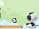 Webcam Top Cambazı